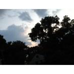 Clouds, Sky & Tree
