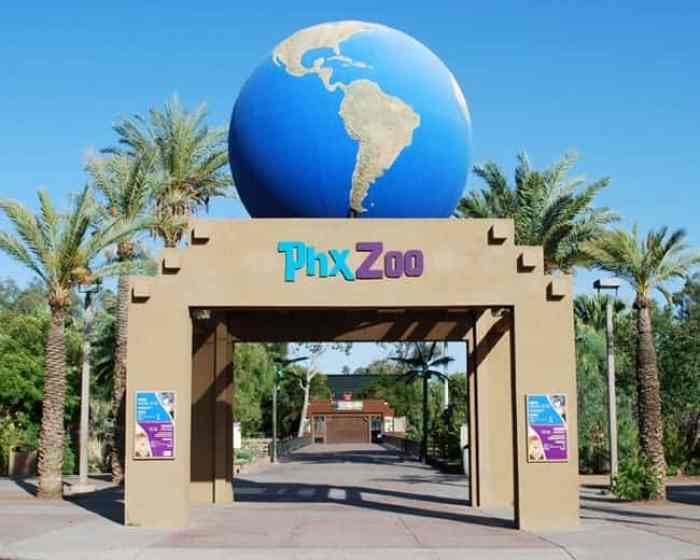 Phx-Zoo The Best Places to Visit In Phoenix Arizona with Kids!