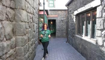 Muggles Bucket List to Harry Potter World Orlando - Seeking Neverland