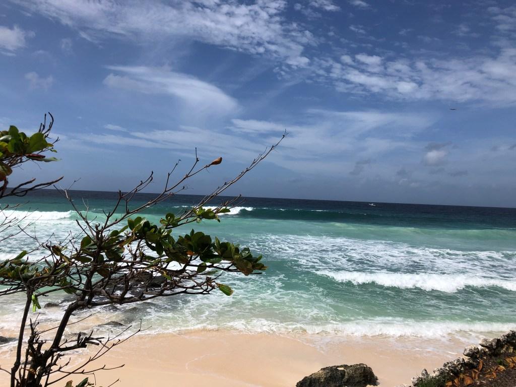 Barbados Beach Generative Abstract Art