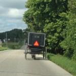 buggy traffic