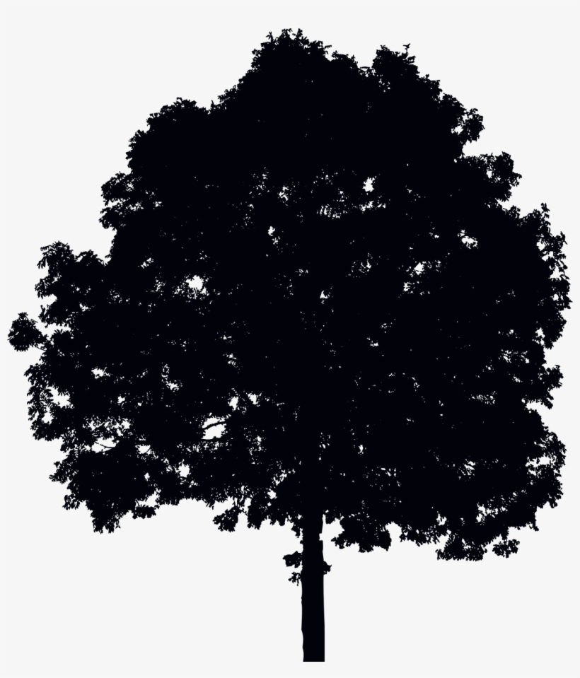 Single Tree Silhouette Silhouette Simple D Arbre Grand Tote Bag Png Image Transparent Png Free Download On Seekpng