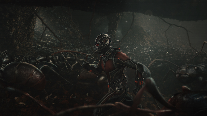 Marvel's Ant-Man..Scott Lang/Ant-Man (Paul Rudd) amongst his ants...Photo Credit: Film Frame..? Marvel 2015