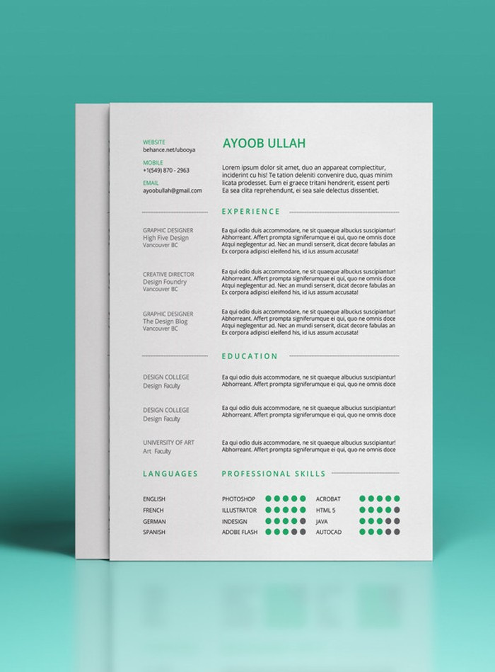 27 Magnificent CV Designs That Will Outshine All The Others Seenox