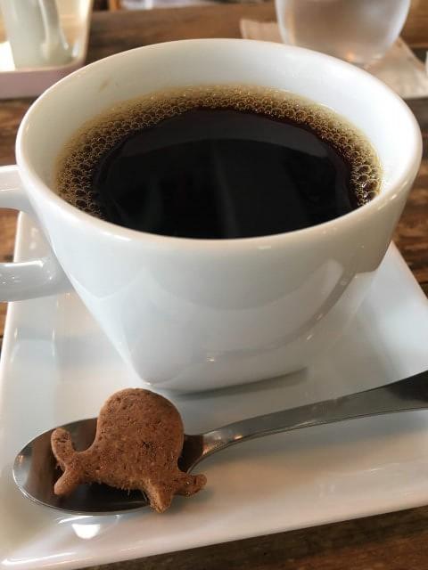 絵本カフェholoholo|コーヒー