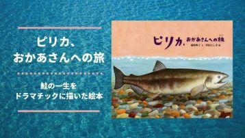 「ピリカ、おかあさんへの旅」鮭の一生を描く、教科書よりも説得力のある絵本