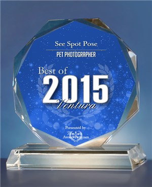 See Spot Pose 2015 Best of Ventura Award