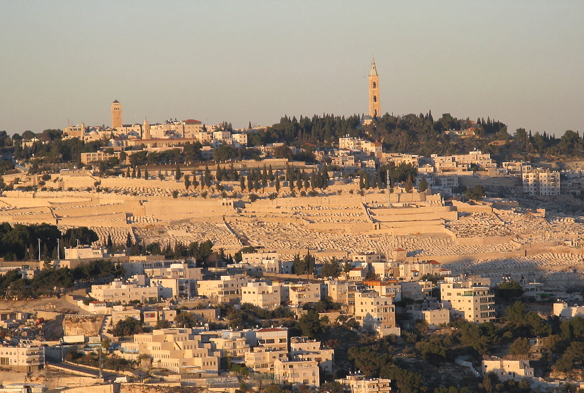 Mount of Olives « See The Holy Land
