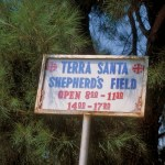 Shepherds' Field
