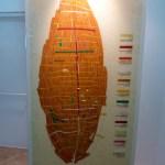 Twelve wood types found in the Jesus Boat (Seetheholyland.net)