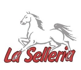laselleria-logo