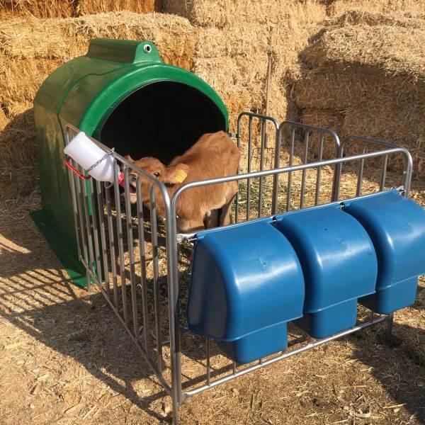 sefa-demir-hayvancılık-tarım-buzağı-kulübesi-barınağı-Takım-2 (3)