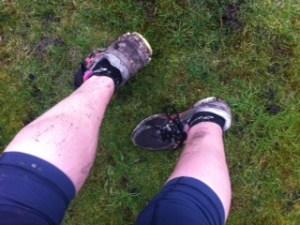muddytrainers