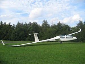 DG 1000S