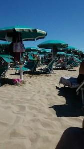 vacanze marina di lesina lido rosa