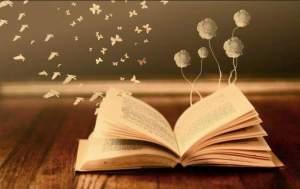 libri - libri