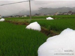 Cina: una misteriosa schiuma esce dalla terra!