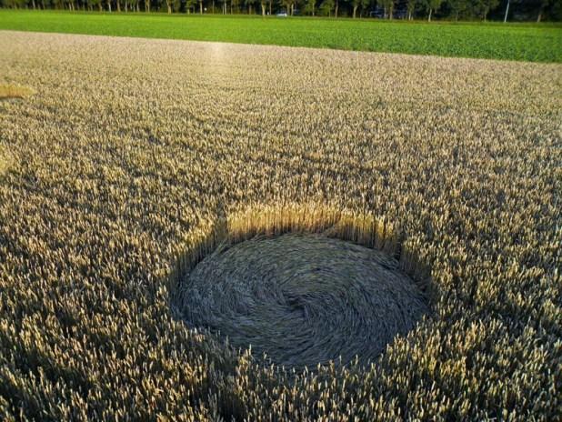Olanda: compare un Crop Circle nei campi di Stadskanaal, Groningen