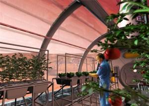 NASA: entro il 2021 una serra marziana