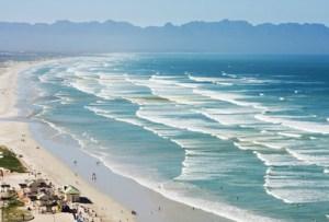 Rinvenuta misteriosa creatura su una spiaggia del Sud Africa