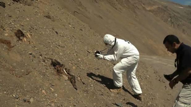 Il terremoto in Cile fa uscire delle mummie dalla loro tomba