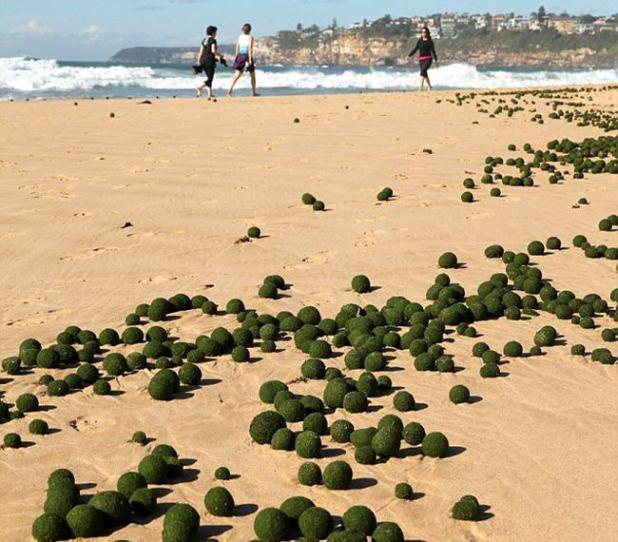 Paesaggio irreale sulla spiaggia di Dee Why