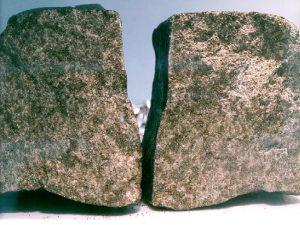 Trovate su un meteorite traccie di vita marziana