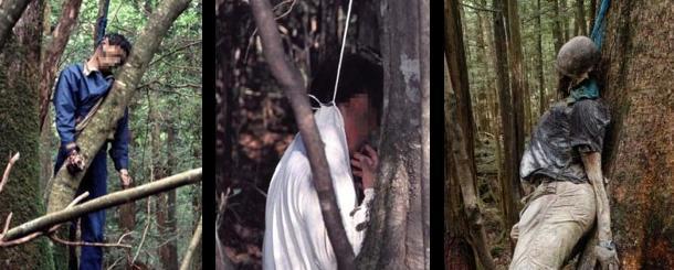 La foresta dei suicidi in Giappone