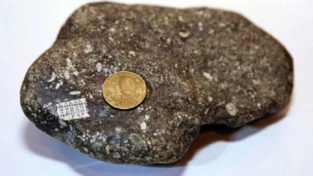Scoperta in Russia pietra con un microchip di 250 milioni di anni