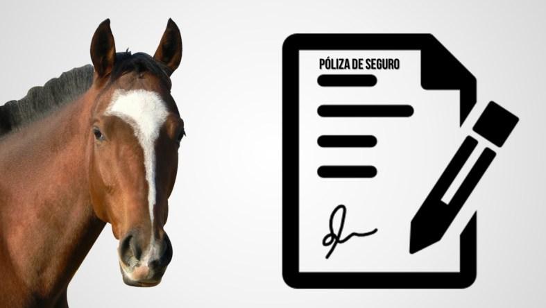 seguro de caballos