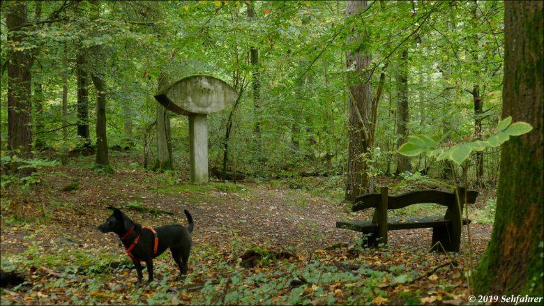 Hund, Bank, Kunstwerk, Wald