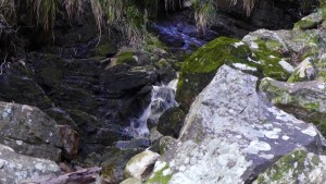 water splashes over mossy rocks