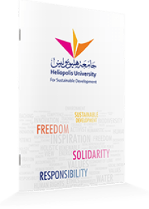 Heliopolis University Brochure