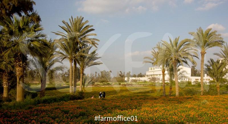 farmoffice01