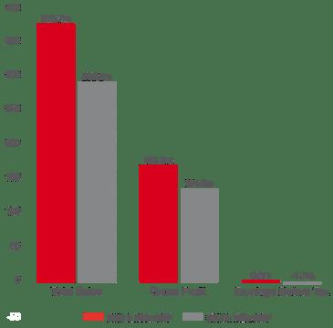 Economical Indicators - Revenue - SEKEM Sustainability Report 2016