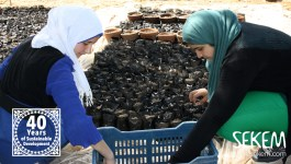 New Generation of Biodynamic Farmers at SEKEMs Vocational Training Center