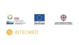 مشروع INTECMED