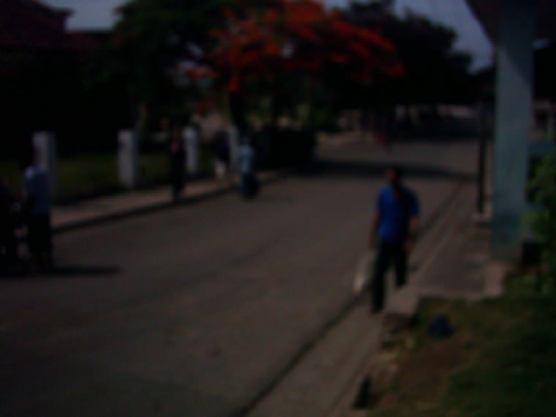 Letzte-Fotos-1-Blick-auf-Straße-mit-Menschen