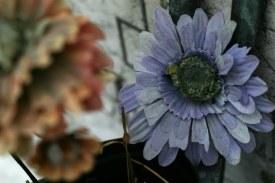 Venedig Blumen Ausw13