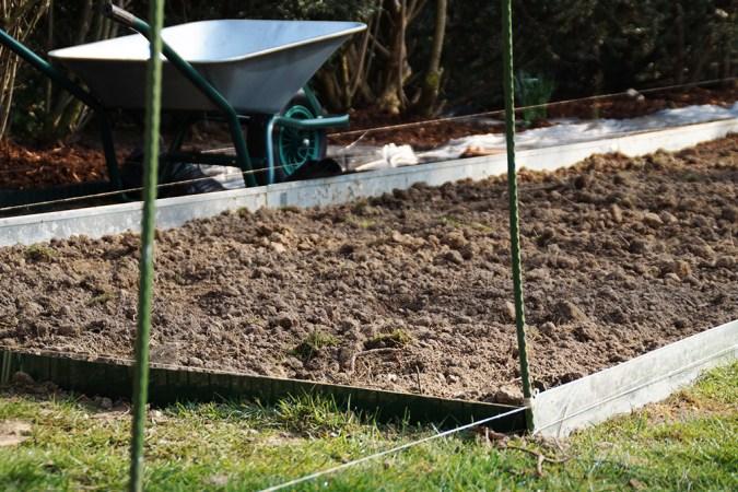 Gemüsebeet anlegen - Vom Stück Land zum Nutzgarten ...