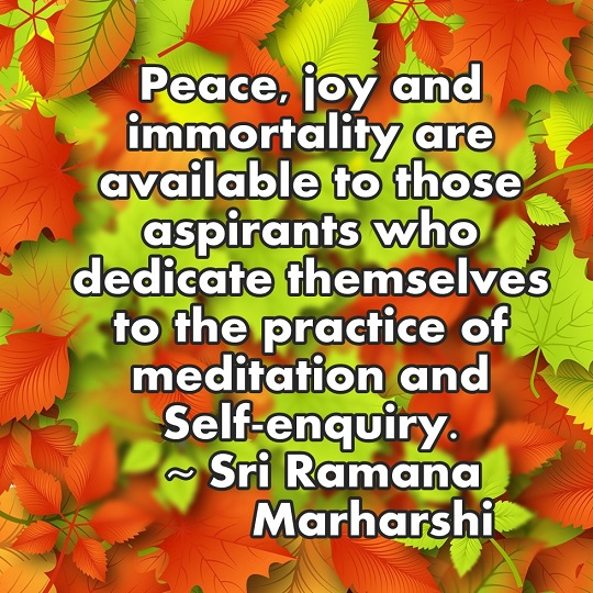 Peace and Joy are the rewards for meditation and self-enquiry. Thanksk for Billy Alexander for the picture.