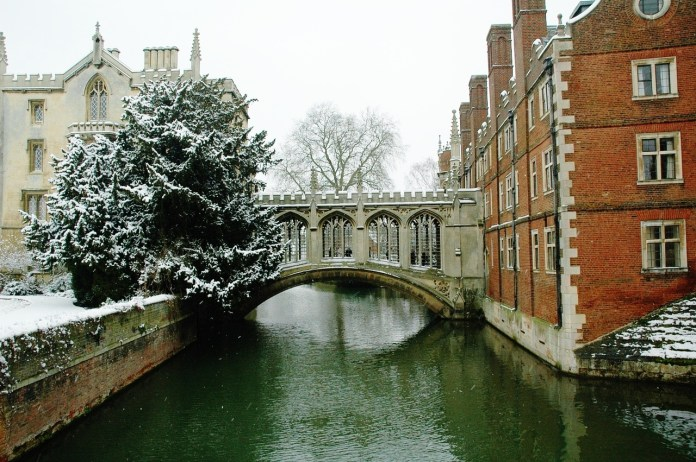 Image result for christmas at cambridge