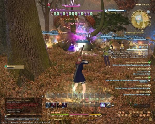 Final Fantasy XIV A Realm Reborn FATE