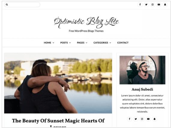 WordPress Themes blog Lite