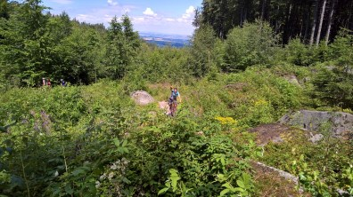 Dr. Weissner Trail - Rychleby Trails