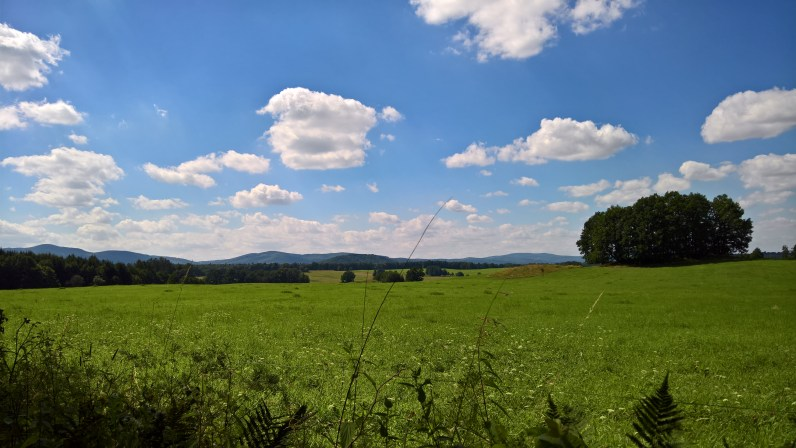 Meadows of Rychleby mountains