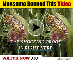 Monsanto Banned This Video