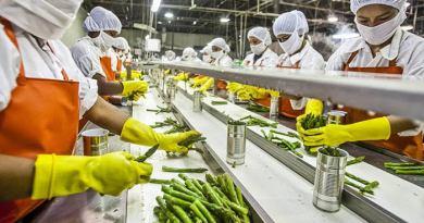 Agricultura familiar baiana vai contar com 422 agroindústrias até 2022