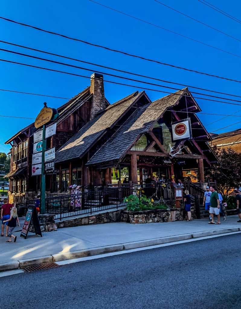 Downtown Blueridge Georgia