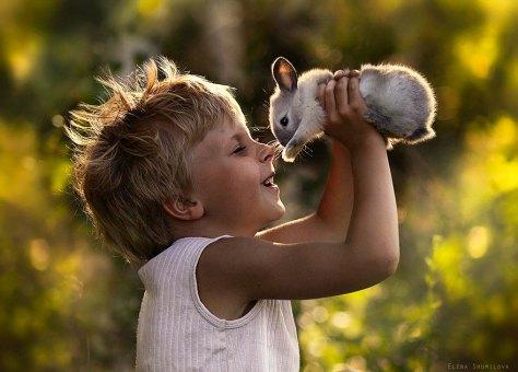 gutt og kanin
